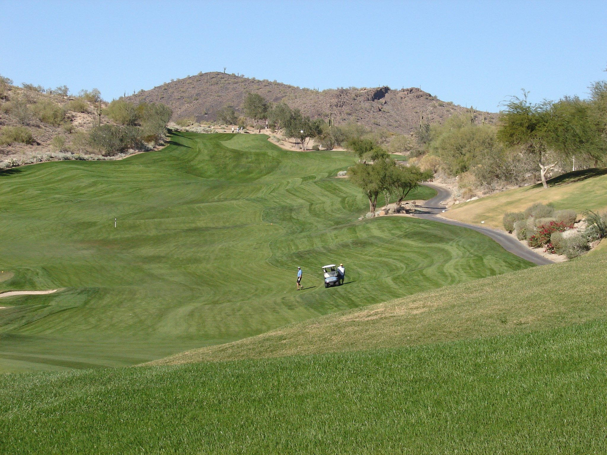 Homes For Sale In Eagle Mountain Fountain Hills Real Estate